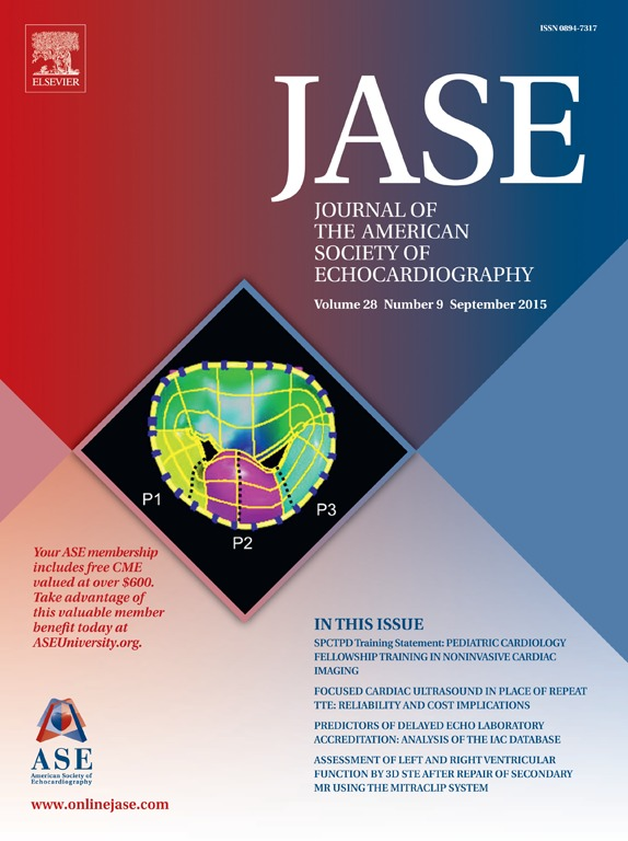 JASE15_Cover